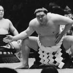 Võ sĩ Sumo là những người có tầm vóc khổng lồ, nhưng lại nhanh nhẹn tuyệt vời