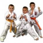 Taekwondo giúp trẻ hoàn thiện hơn